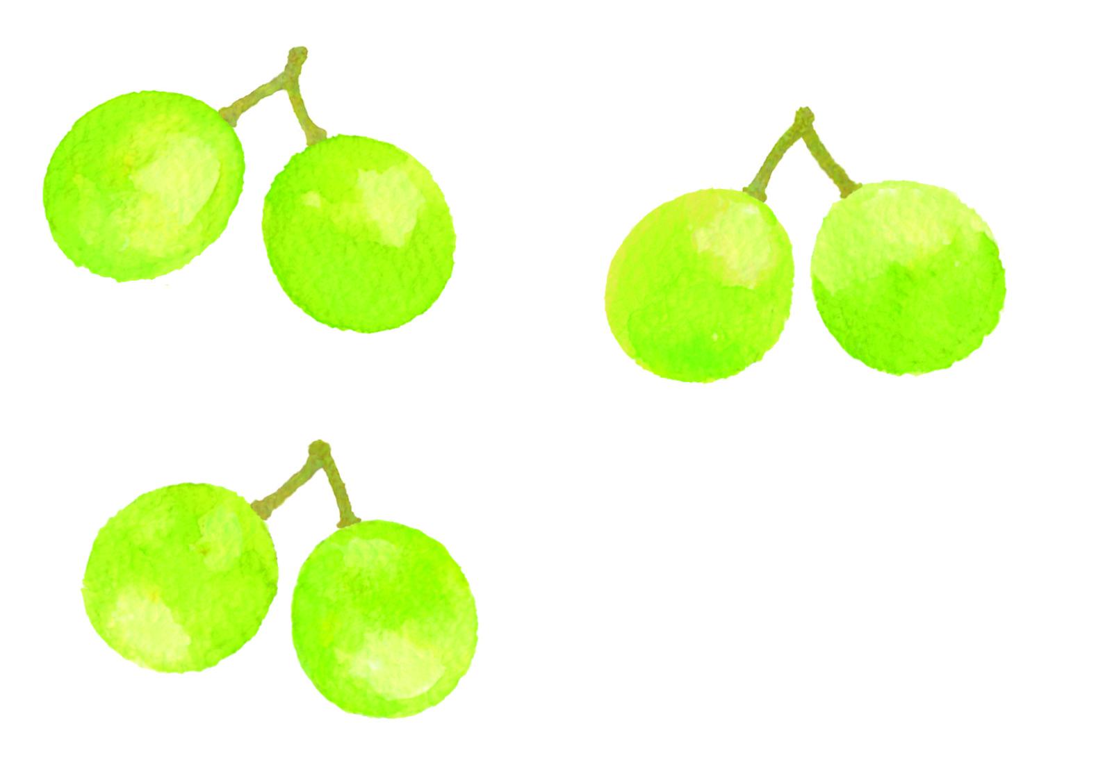 マスカット果実